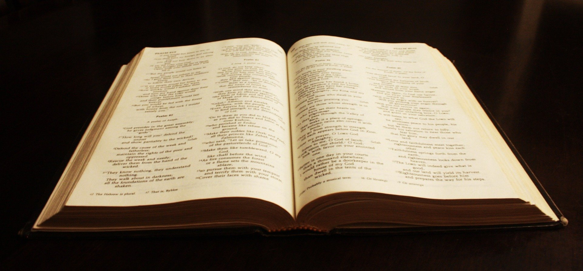 The Study of the Scriptures